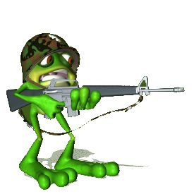 frogsoldier1.jpg